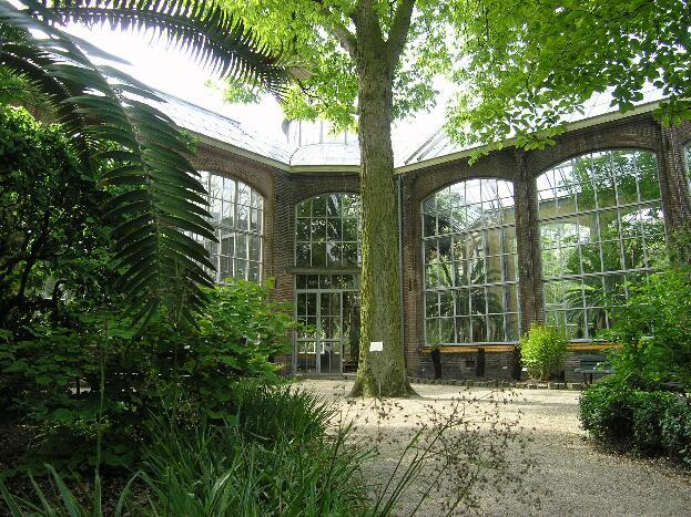 Botanische Tuin Amsterdam : Hortus botanicus amsterdam alles wat u moet weten voordat