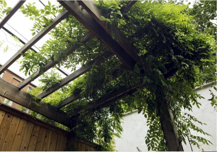 700_adrian-grenier-garden-a