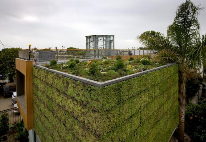 Verticale Tuin Intratuin : De groenste woning van californië heeft een verticale tuin