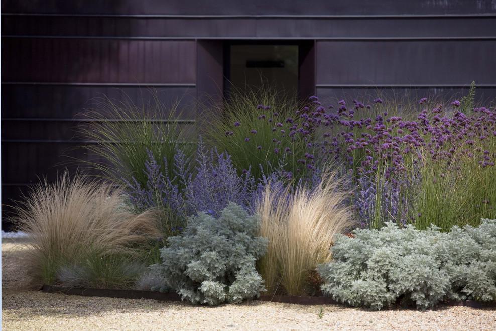 Een landelijke tuin voor luxe country hotel in itali for Modern ornamental grasses