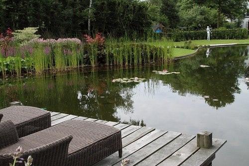 pond4
