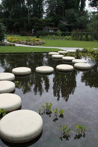 pond6