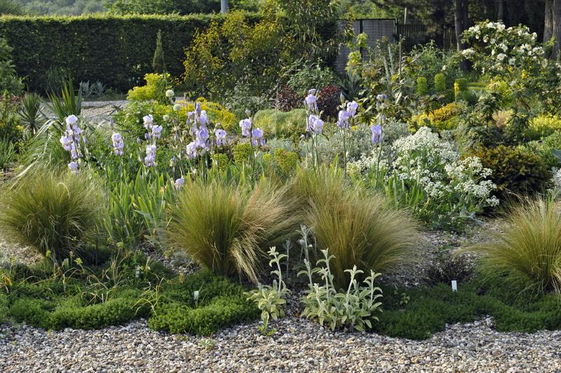 Borders met een natuurlijke uitstraling zijn de norm for Peter janke design mit pflanzen