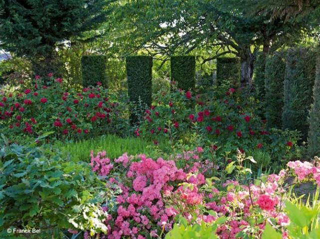 De rozentuin van chinon tuinenstruinen org for Jardin roses