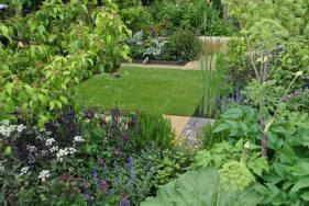 'Sowing the Seeds of Change'HomeBase Garden