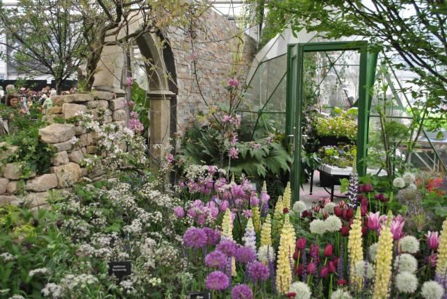 The Secret Garden of Past en Present van Sutton Seeds