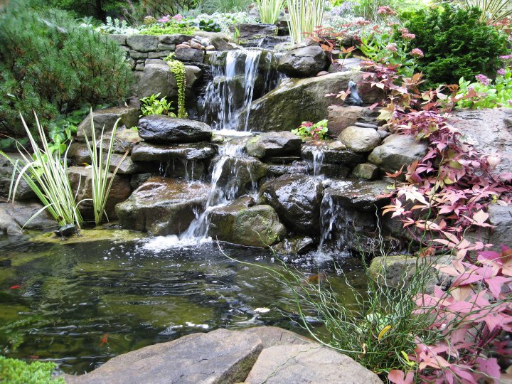 Vijvers brengen leven en rust in de tuin for Vijver voor kleine tuin