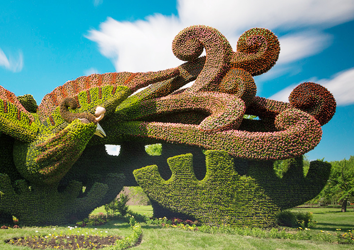 Mosaicultures-Internationales-de-Montreal-4