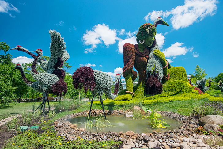 Mosaicultures-Internationales-de-Montreal-5