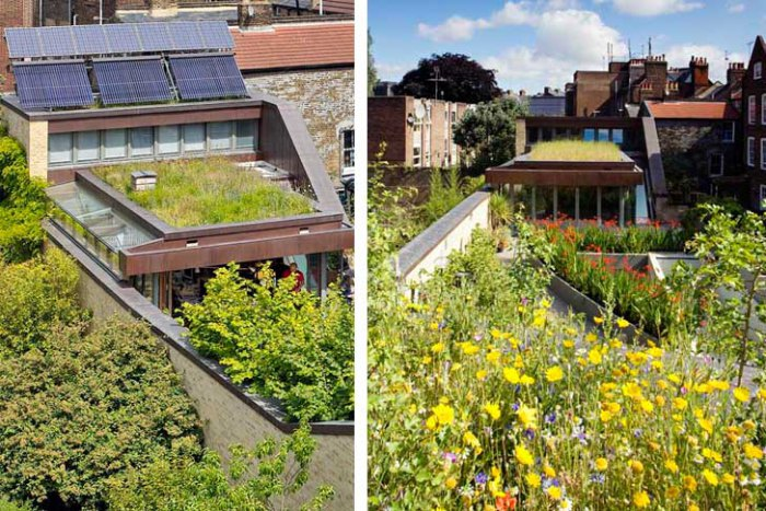 bere-architects-passivhaus-roof-gardens-energy-efficient-the-muse-7