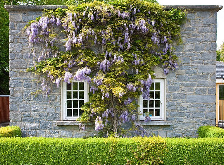 Irish country cottage, County Limerick. Image shot 2010. Exact date unknown.