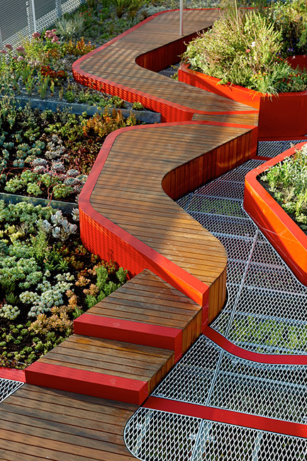BurnleyLivingRoofs_HASSELL_02_PeterBennetts