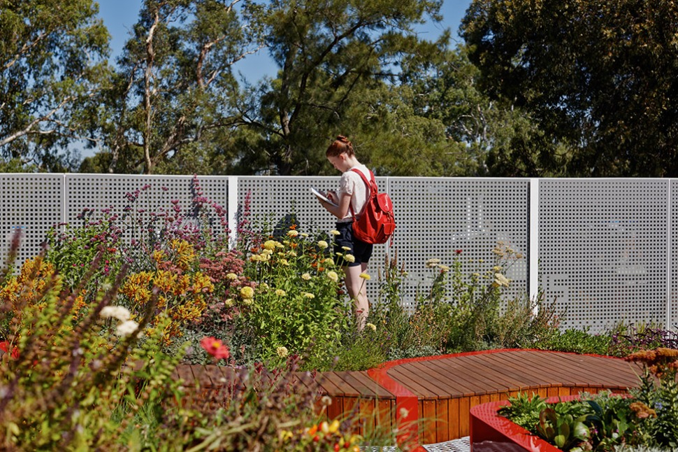 BurnleyLivingRoofs_HASSELL_04_PeterBennetts