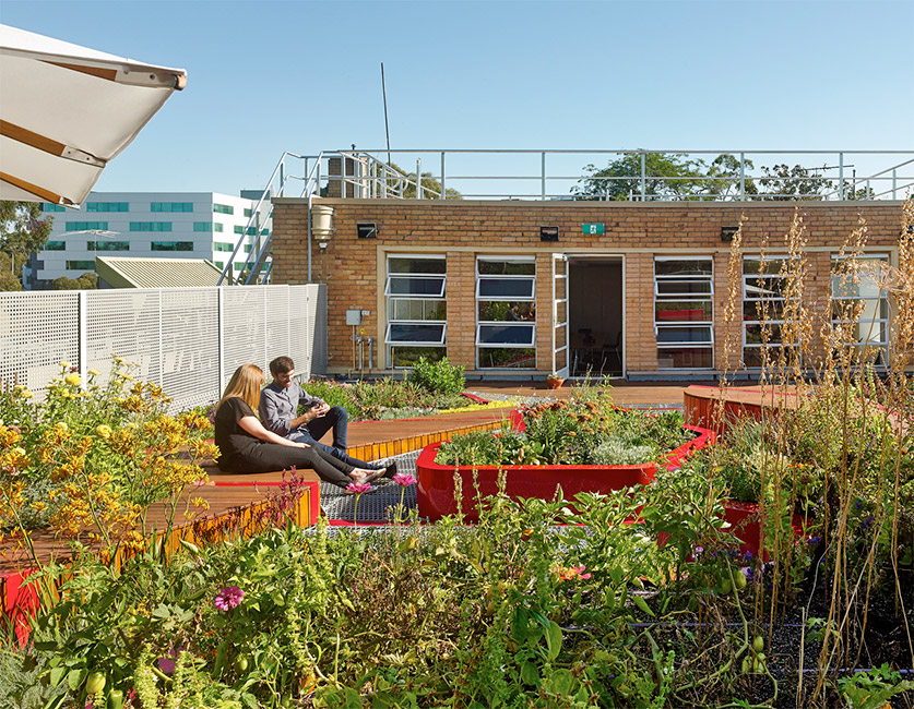 BurnleyLivingRoofs_HASSELL_08_PeterBennetts