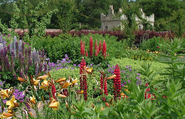 foto; gardenvisit.com