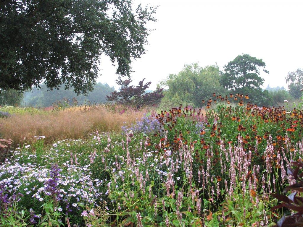 Beplantingsplan Natuurlijke Tuin : Go wild een gids voor het maken van een natuurlijke tuin