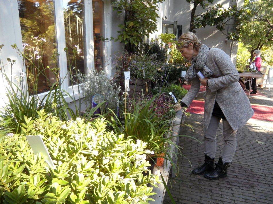 Het gezellige plantenwinkeltje.