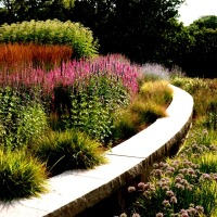 Adam Woodruff - Jones Road Prairie Garden.