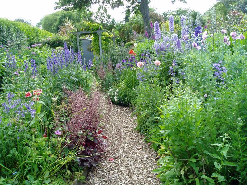 Poppy Cottage Garden In Cornwall Tuinenstruinen Org