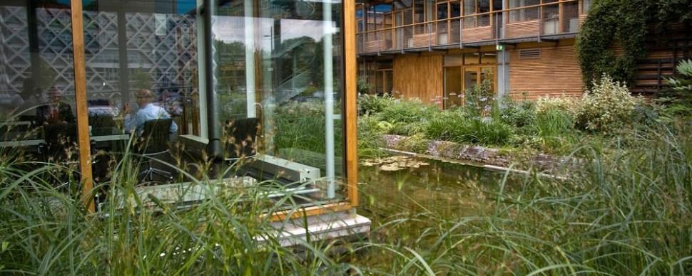 Binnentuin Alterra Wageningen. Ontwerp van Copijn Landschaparchitectuur