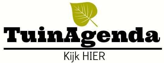 tsgw agenda logo