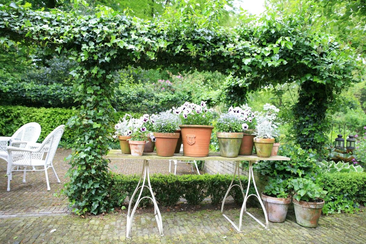 De tuin van Marieke Nolsen