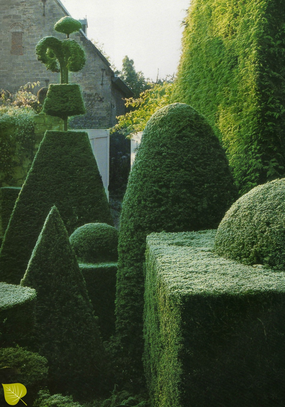 ineke topiary