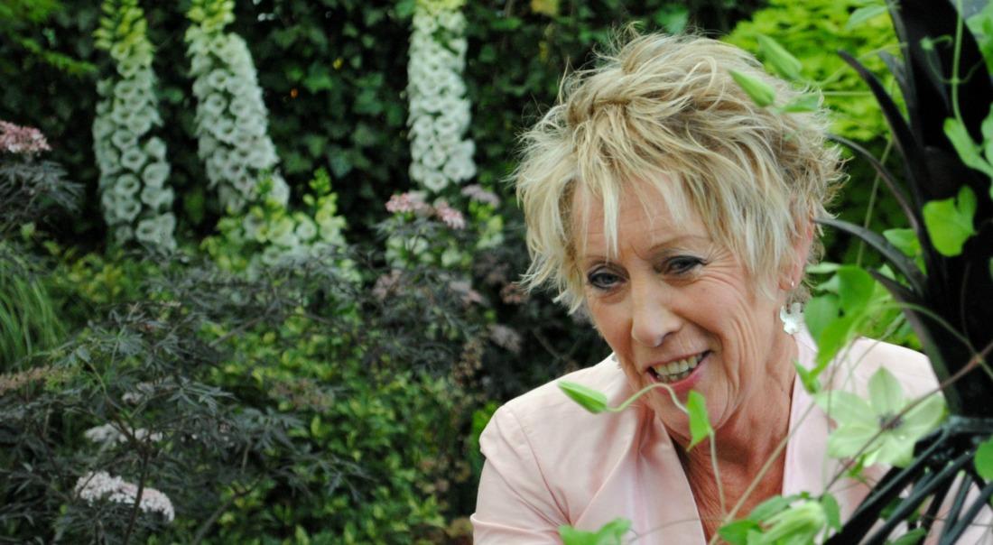 Carol klein panties planten en motorfietsen for Tuinprogramma op tv