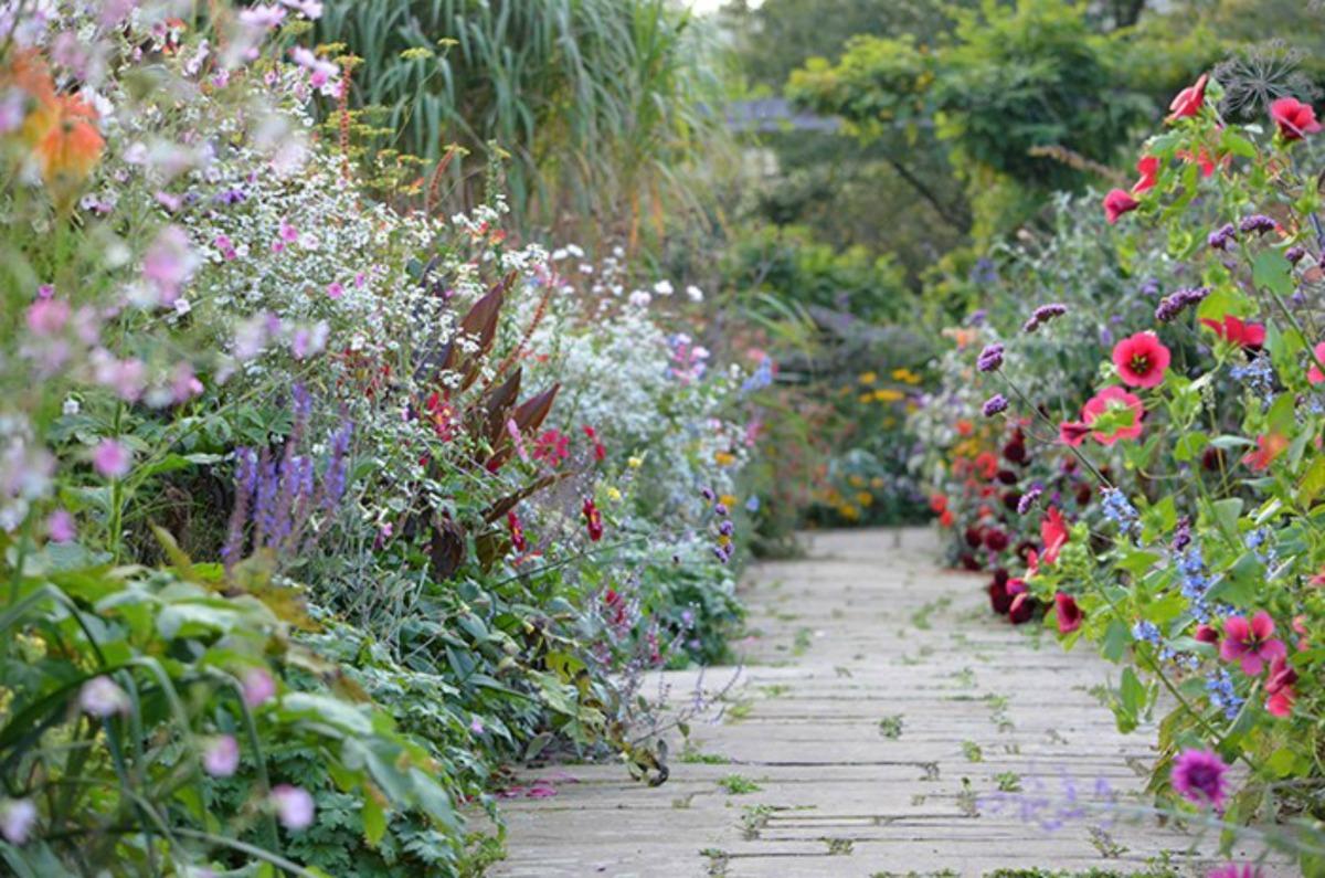 Go wild! geschiedenis van de natuurstijl in de tuin ...