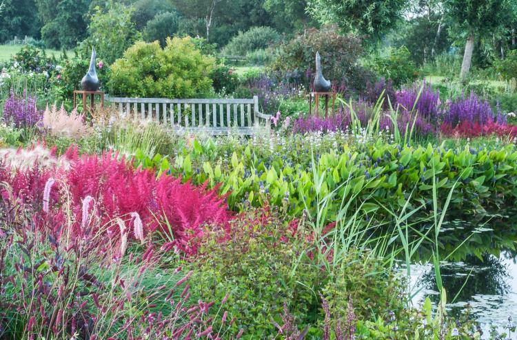 Spetterende kleuren in juli