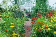 de kas vanuit de Zonnige tuin (juli-aug)
