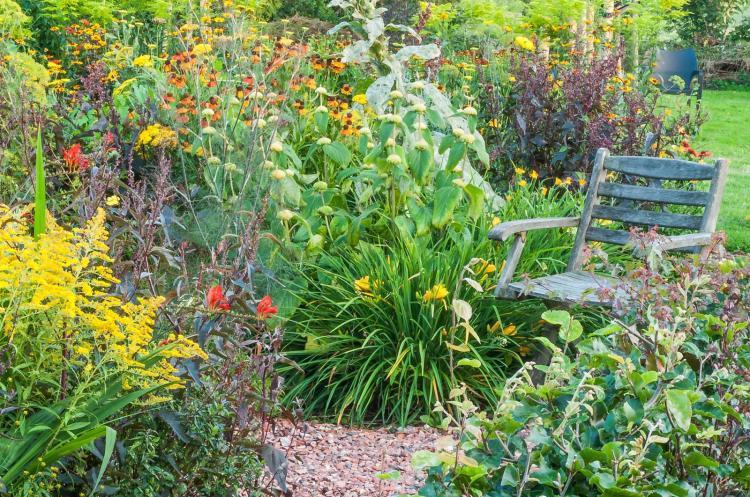 Detail Zonnige tuin (aug)