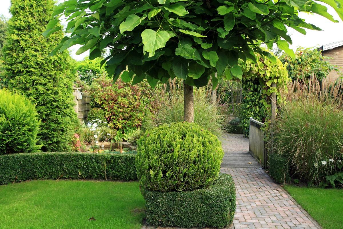 20 juni open tuindagen groei bloei hoeksche waard tuinenstruinen org - Foto droge tuin ...