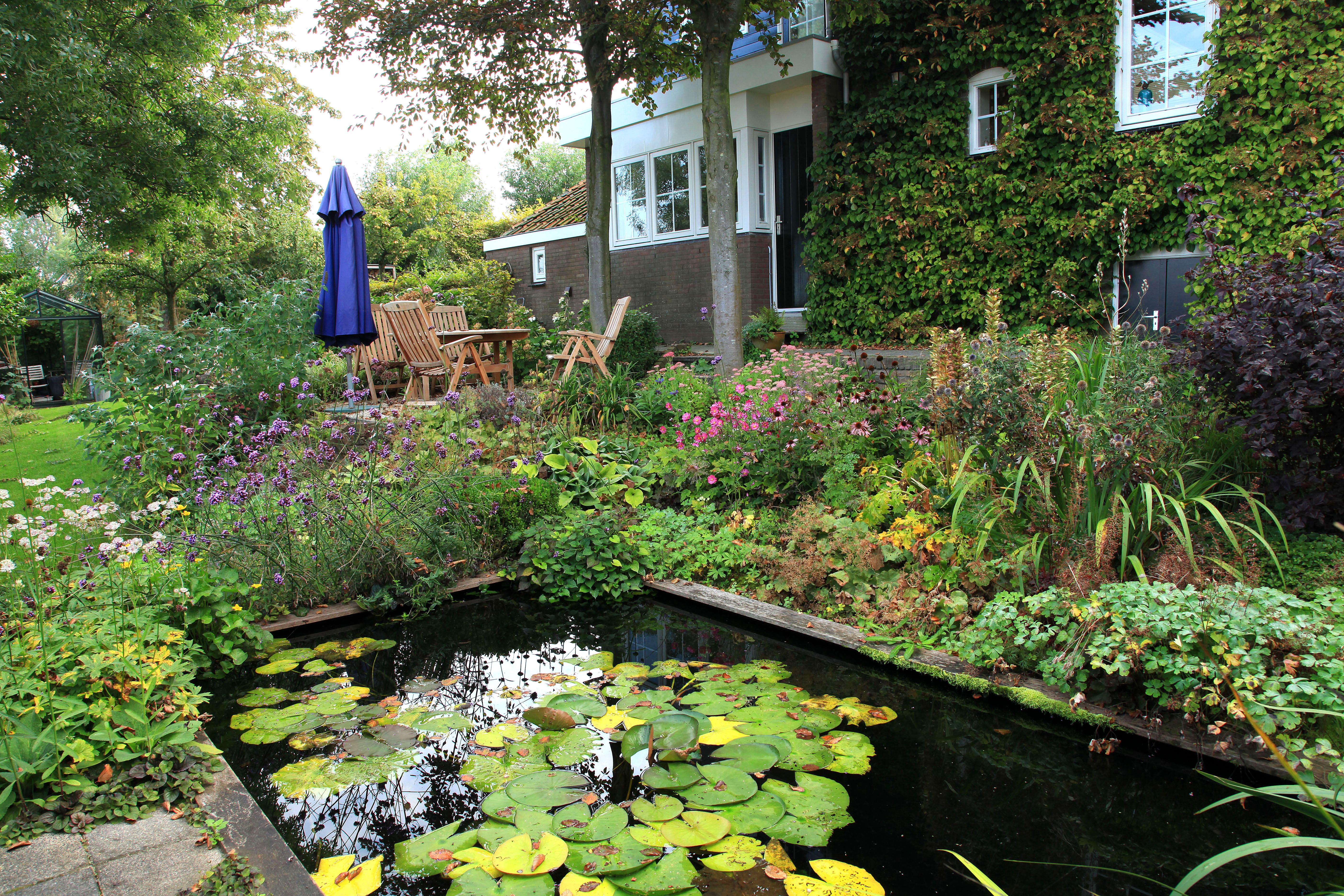 20 juni open tuindagen groei bloei hoeksche waard tuinenstruinen org - Tuin layout foto ...