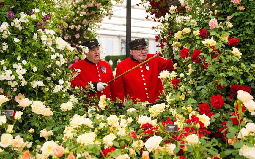 Chelsea Flower Show Bulletin