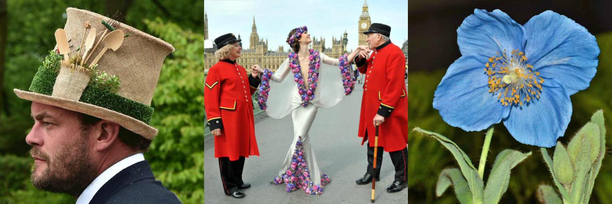 RHS Chelsea Flower Show Bulletin Maandag 18 mei