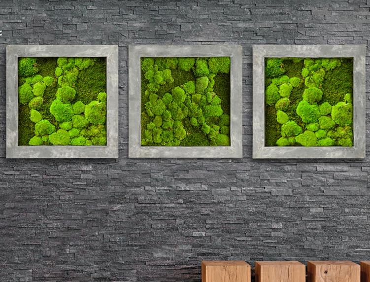 Beste Natuur aan de muur met gemummificeerd mos – TUINENSTRUINEN.ORG SH-07