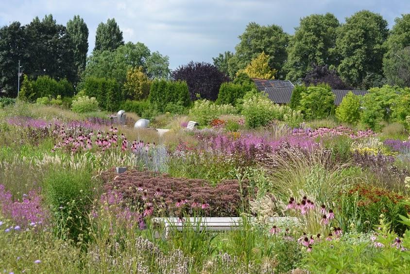 De vlinderhof in utrecht ontworpen door piet oudolf for Piet oudolf pflanzplan