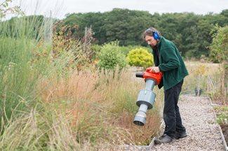 Een onderzoeker aan het werk in de RHS Wisley Garden.