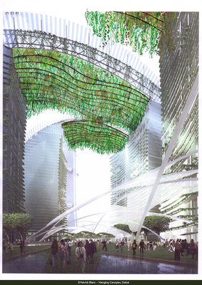 Een innovatief groen ontwerp van Patrick Blanc voor het centrum van Dubai. Copyright foto: Patrick Blanc