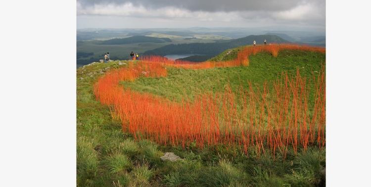 Flowe Line Willow, paint. 250-meter circumference. Horizons Rencontres 2007. Puy de Chambourguet, Besse et-Saint-Anastaise, Auvergne, France.