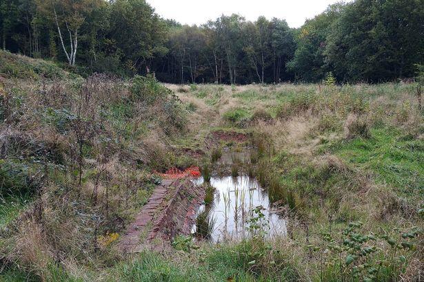 De huidige staat van het landgoed. Ongeveer op deze plek zal de nieuwe ommuurde tuin komen.
