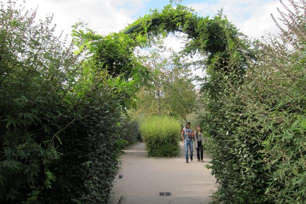 promenade-plantee-walking-thru-arches-grasses