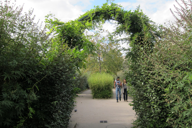 promenade-plantee-walking-thru-arches-grasses