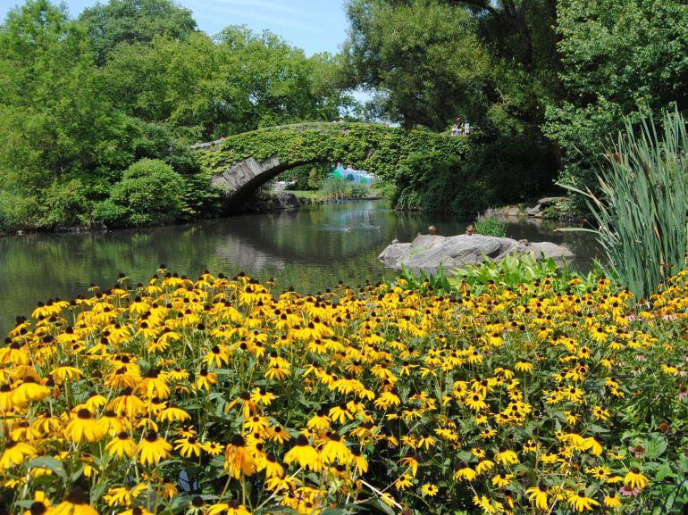 Central-Park-New-York kopie
