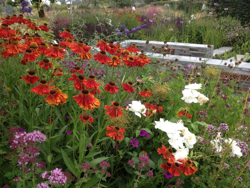 De Inclusieve tuin Foto: Elle Miggiels