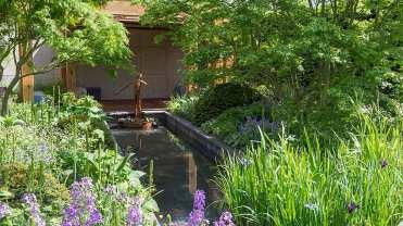 The Morgan Stanley Garden for Great Ormond Street Hospital door Chris Beardshaw