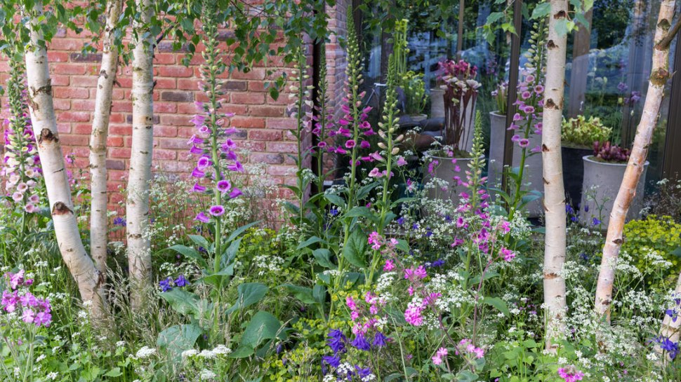 The-Hartley-Botanic-Garden_1088x612_V0P0343