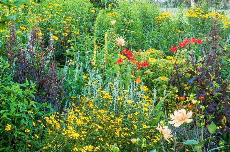 19. detail van de Zonnige tuin ( eind juli)