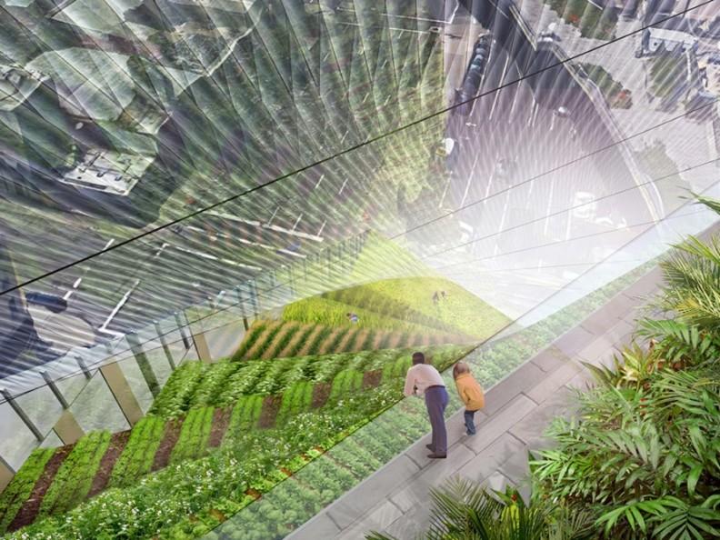 Hybrid-Farm-Koolhaas-Garden-Apartment-Building-Weston-Baker-Render-889x667